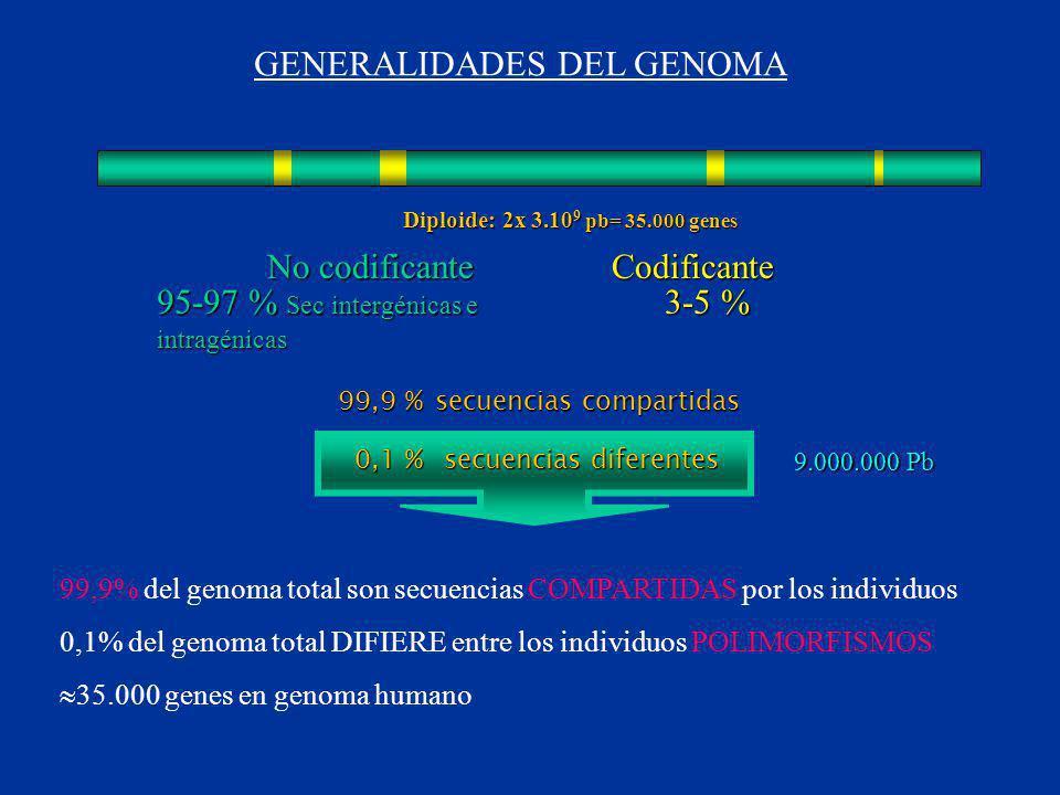 GENERALIDADES DEL GENOMA