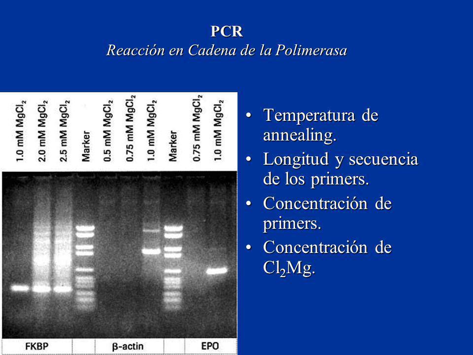 PCR Reacción en Cadena de la Polimerasa