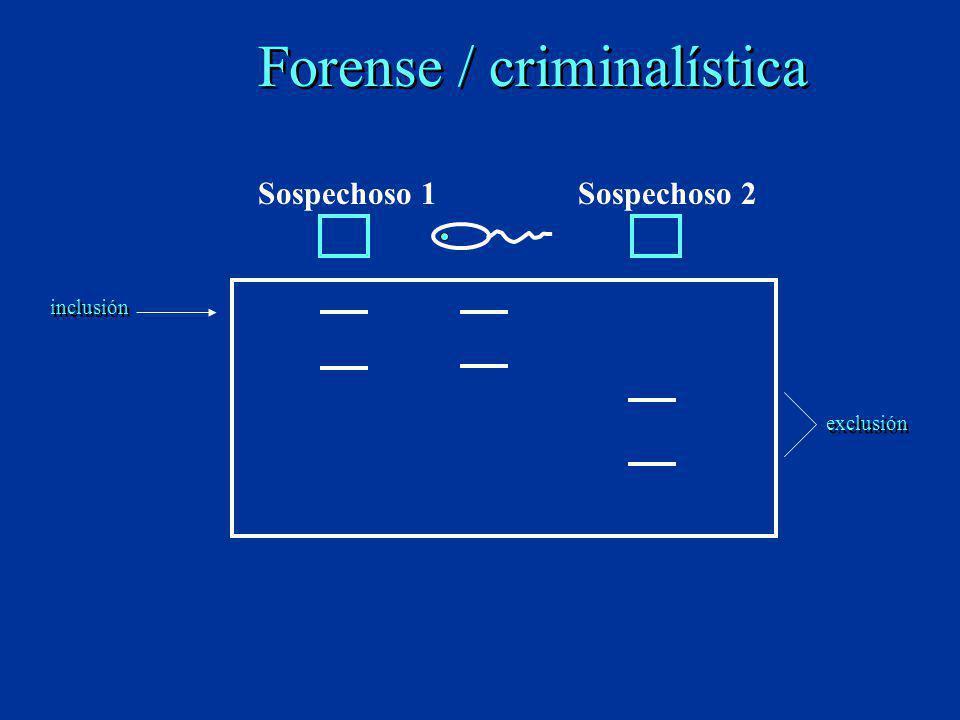 Forense / criminalística