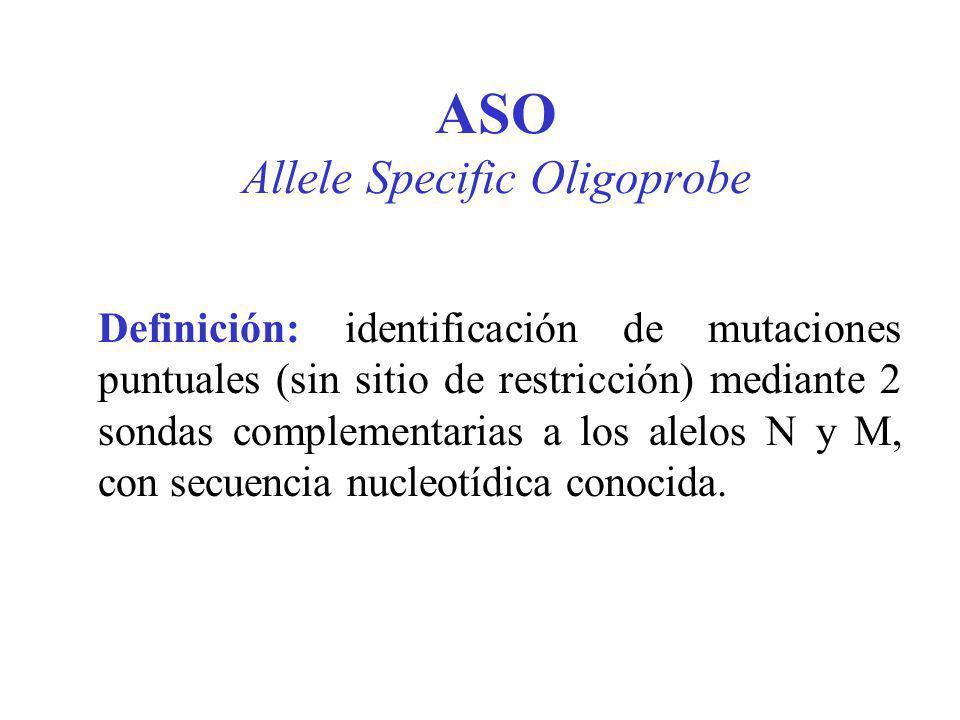 ASO Allele Specific Oligoprobe