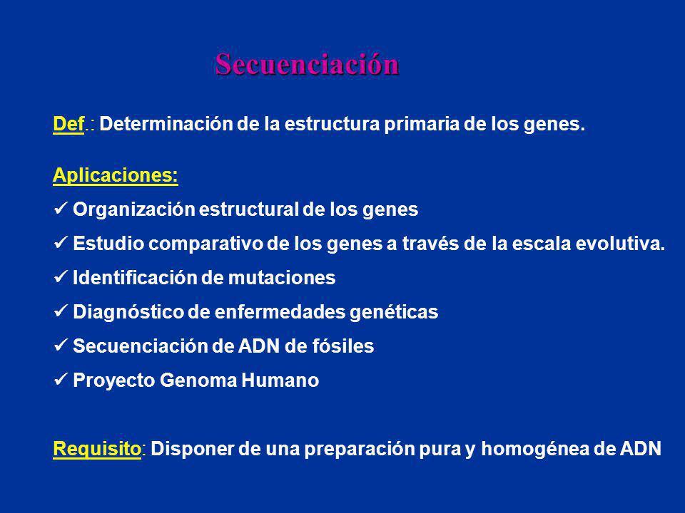Secuenciación Def.: Determinación de la estructura primaria de los genes. Aplicaciones:  Organización estructural de los genes.