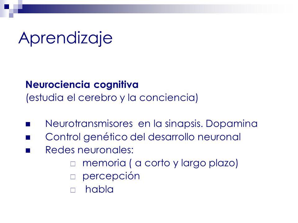 Aprendizaje Neurociencia cognitiva