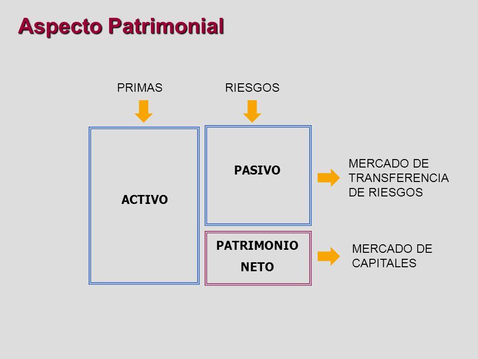 Aspecto Patrimonial PRIMAS RIESGOS ACTIVO PATRIMONIO NETO PASIVO