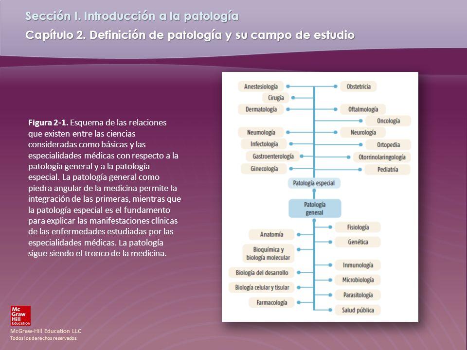 Figura 2-1.