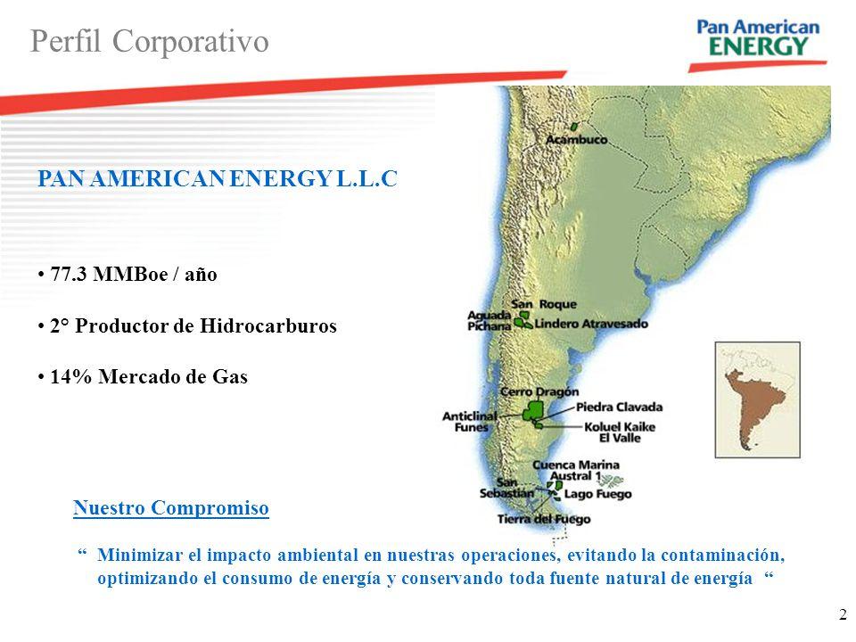 Perfil Corporativo PAN AMERICAN ENERGY L.L.C 77.3 MMBoe / año