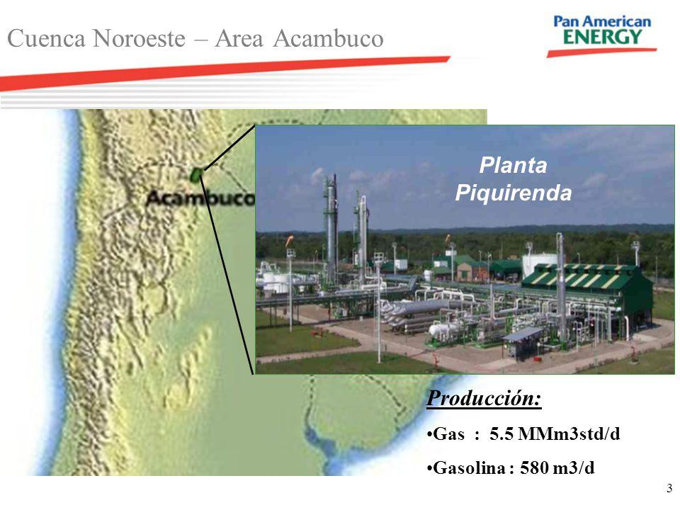 Cuenca Noroeste – Area Acambuco