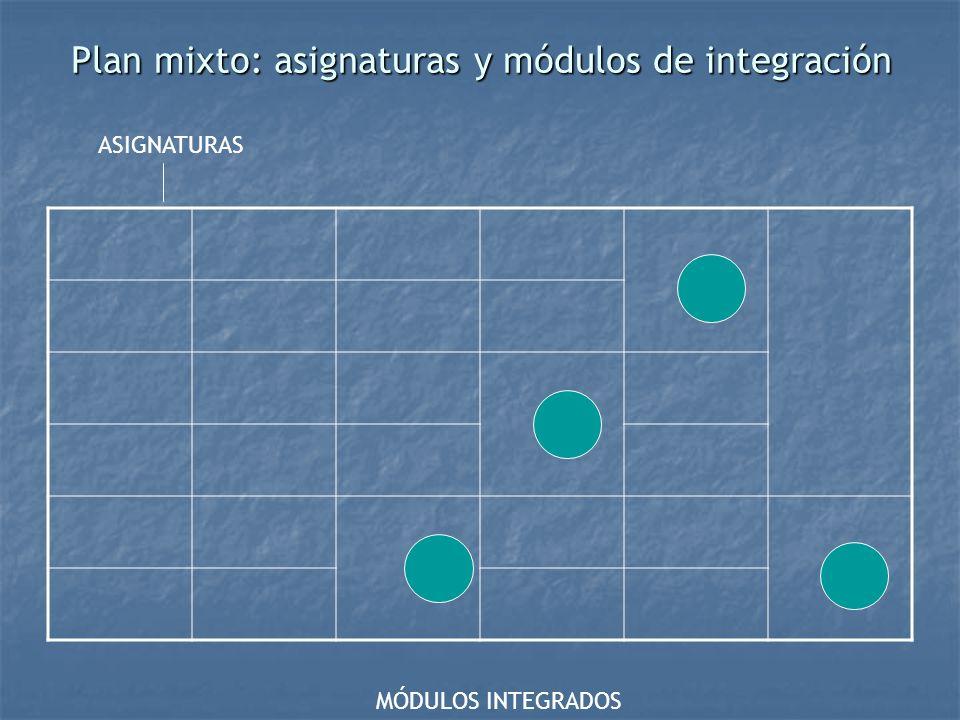 Plan mixto: asignaturas y módulos de integración