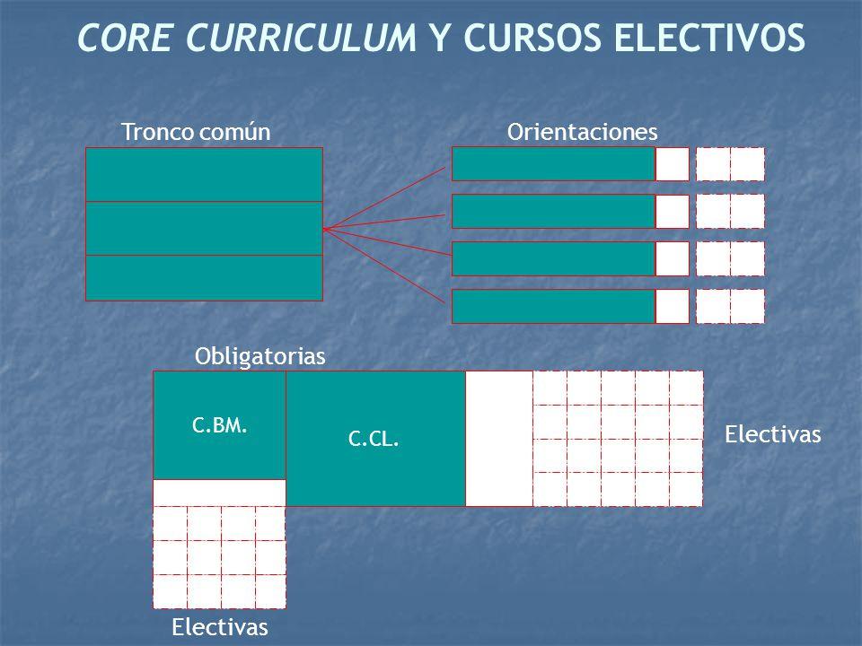 CORE CURRICULUM Y CURSOS ELECTIVOS