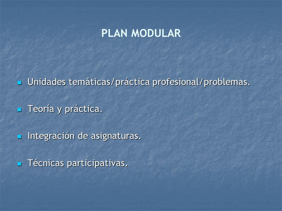 PLAN MODULAR Unidades temáticas/práctica profesional/problemas.