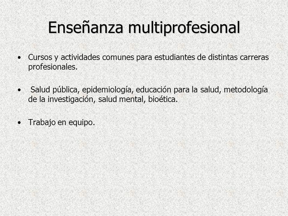 Enseñanza multiprofesional