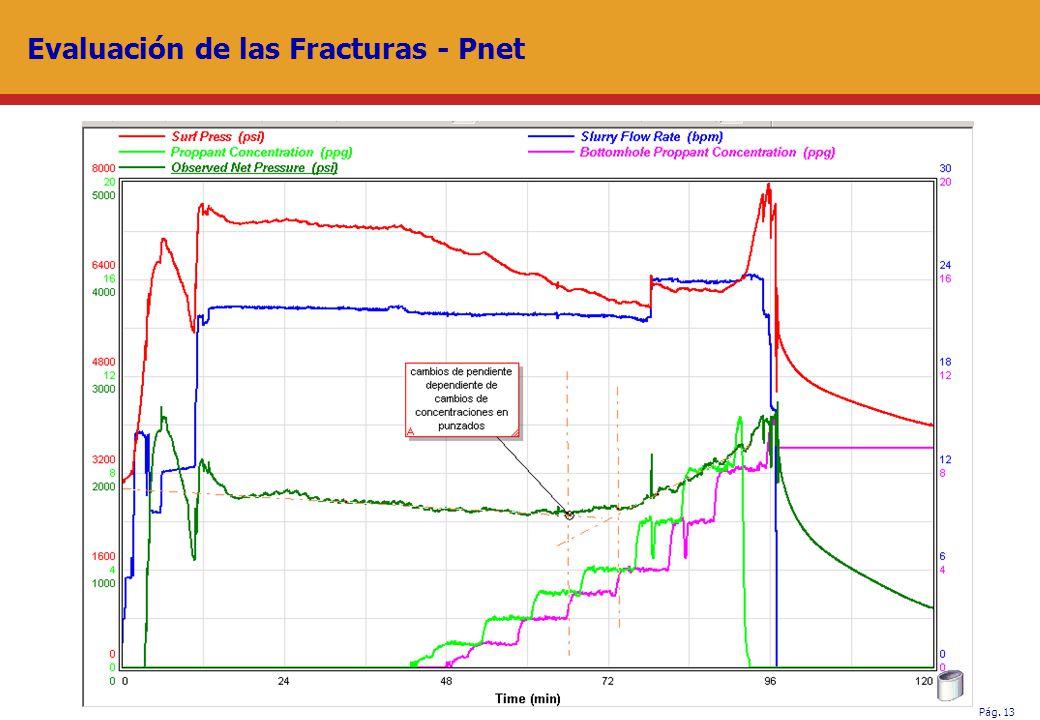 Evaluación de las Fracturas - Pnet