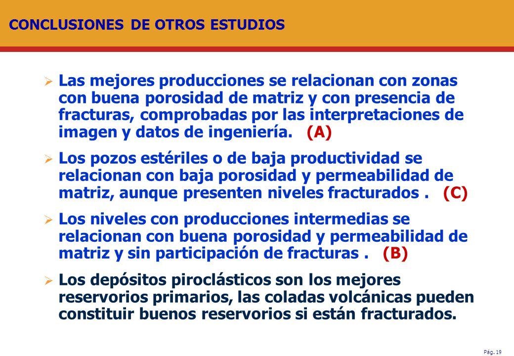 CONCLUSIONES DE OTROS ESTUDIOS