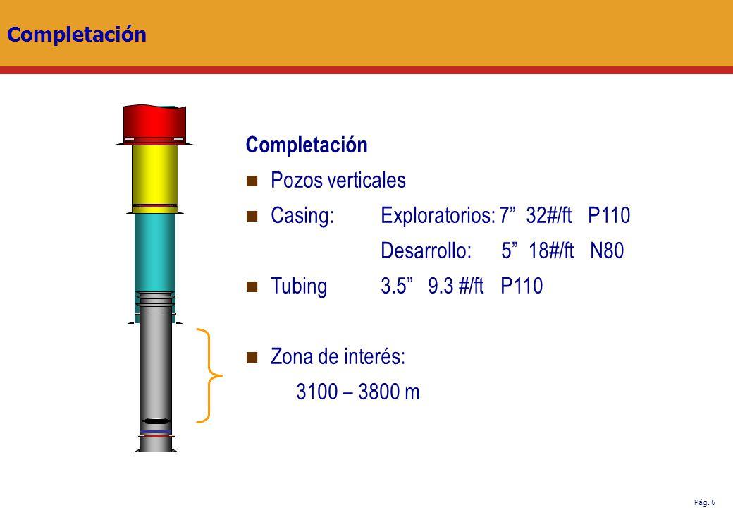 Casing: Exploratorios: 7 32#/ft P110 Desarrollo: 5 18#/ft N80