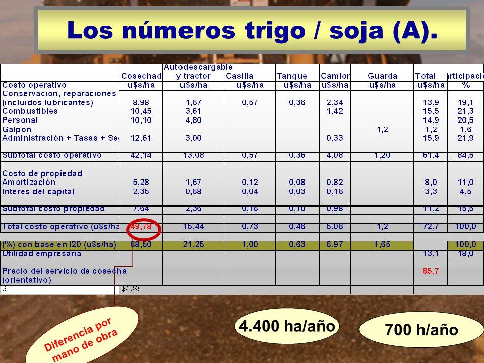 Los números trigo / soja (A).