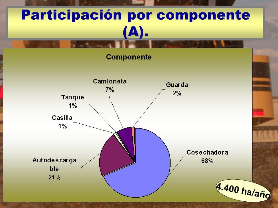 Participación por componente (A).