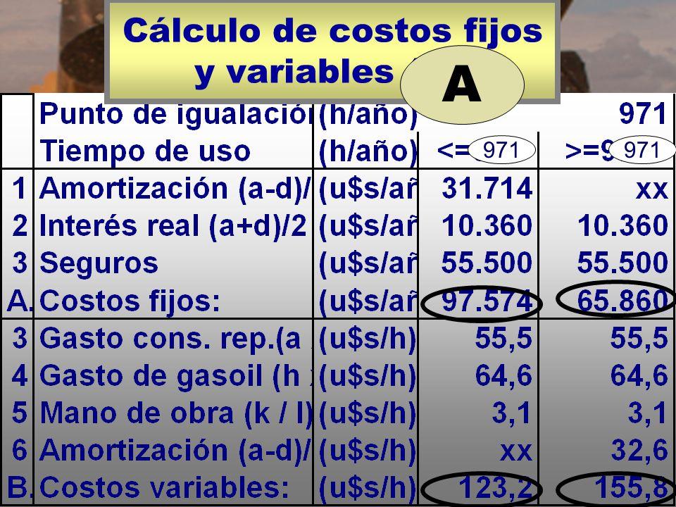 Cálculo de costos fijos y variables (A).