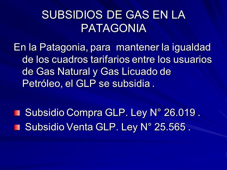 SUBSIDIOS DE GAS EN LA PATAGONIA