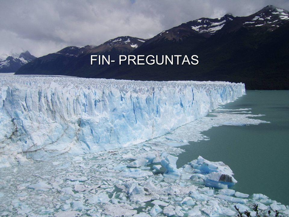 FIN- PREGUNTAS