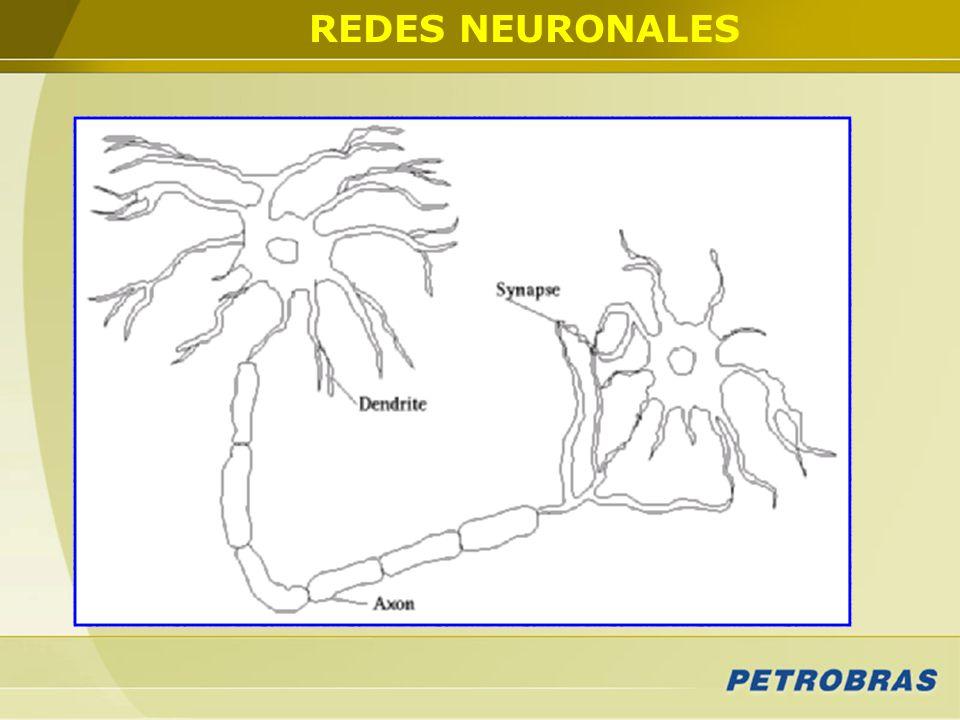 REDES NEURONALES En función de los resultados obtenidos a partir de las estimaciones realizadas con métodos lineales, se recurrió a la técnica de RN.