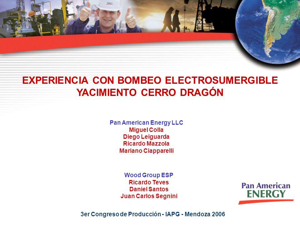 EXPERIENCIA CON BOMBEO ELECTROSUMERGIBLE YACIMIENTO CERRO DRAGÓN