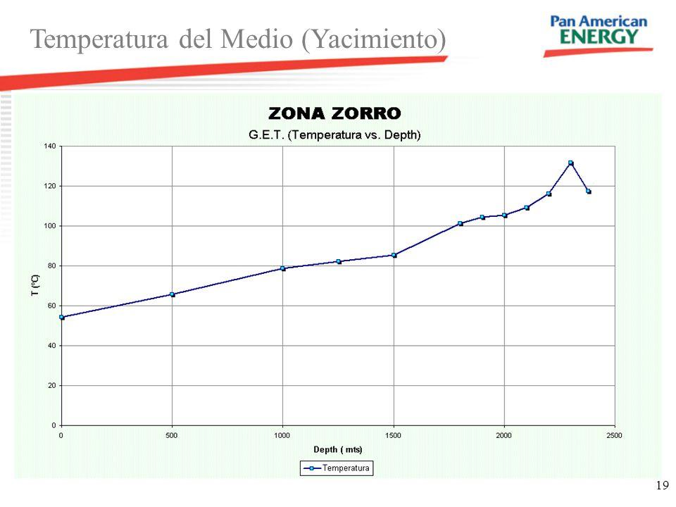 Temperatura del Medio (Yacimiento)