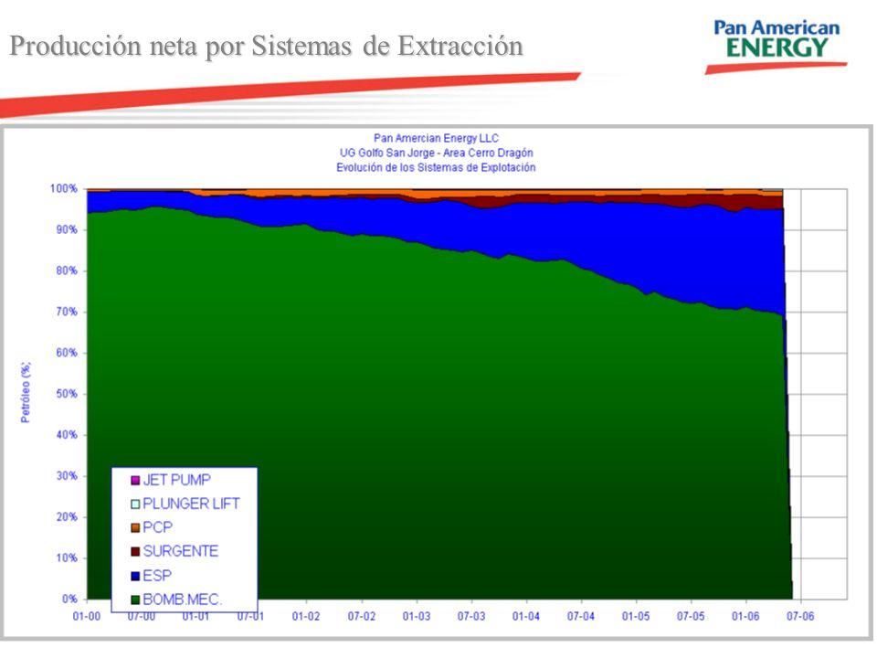Producción neta por Sistemas de Extracción