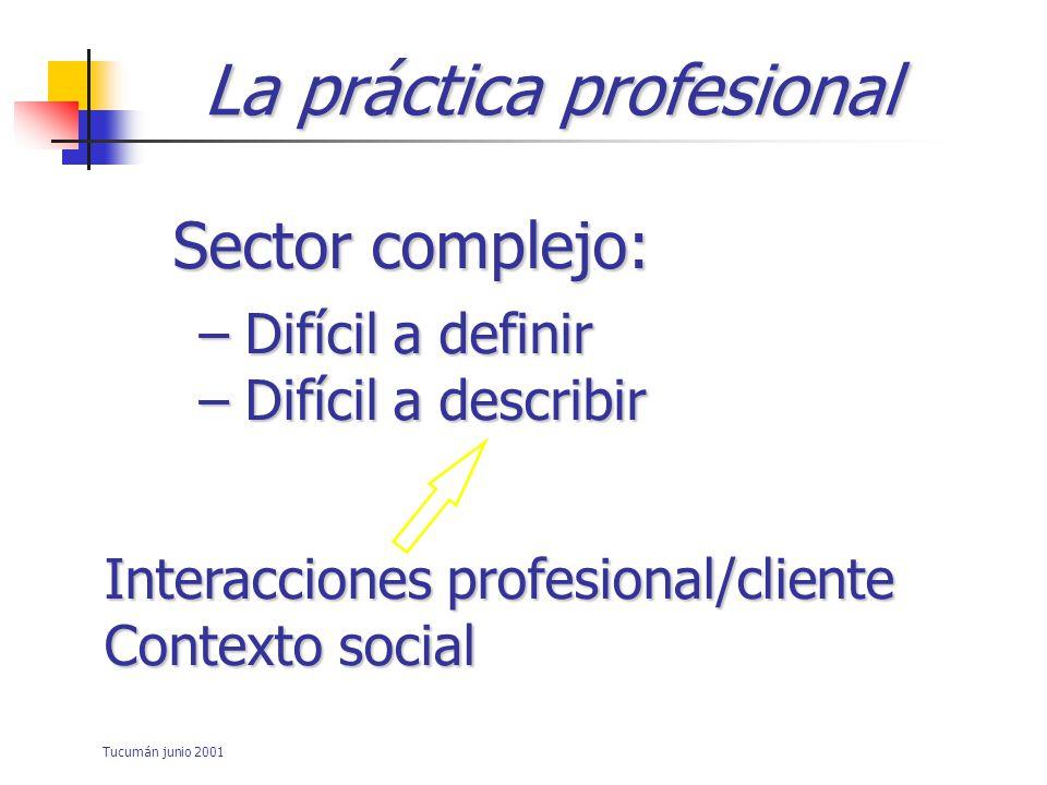 La práctica profesional