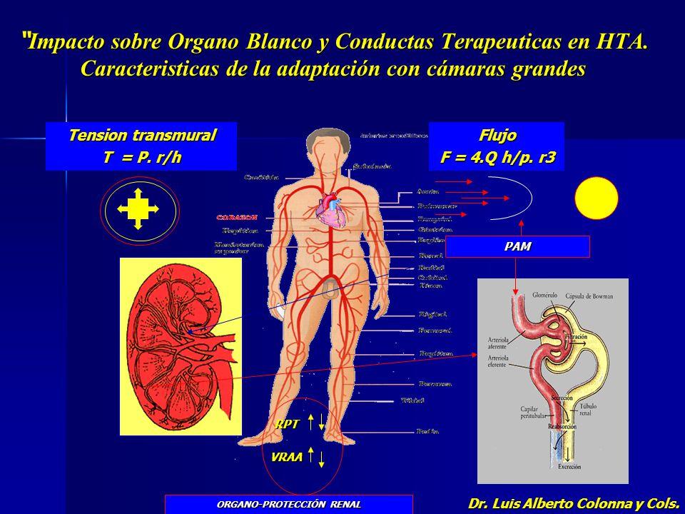 ORGANO-PROTECCIÓN RENAL Dr. Luis Alberto Colonna y Cols.