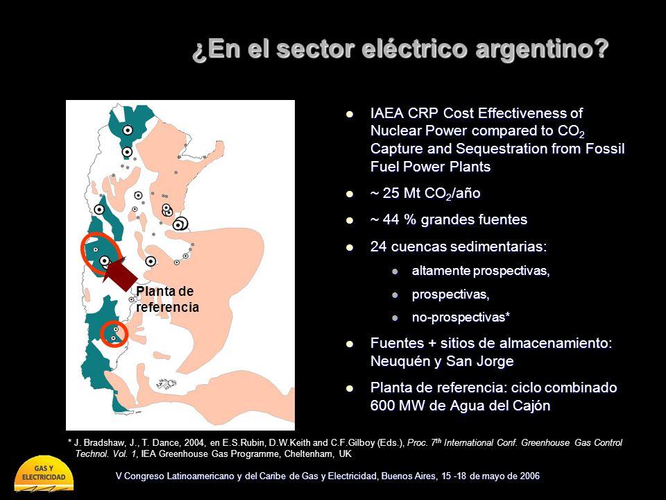 ¿En el sector eléctrico argentino