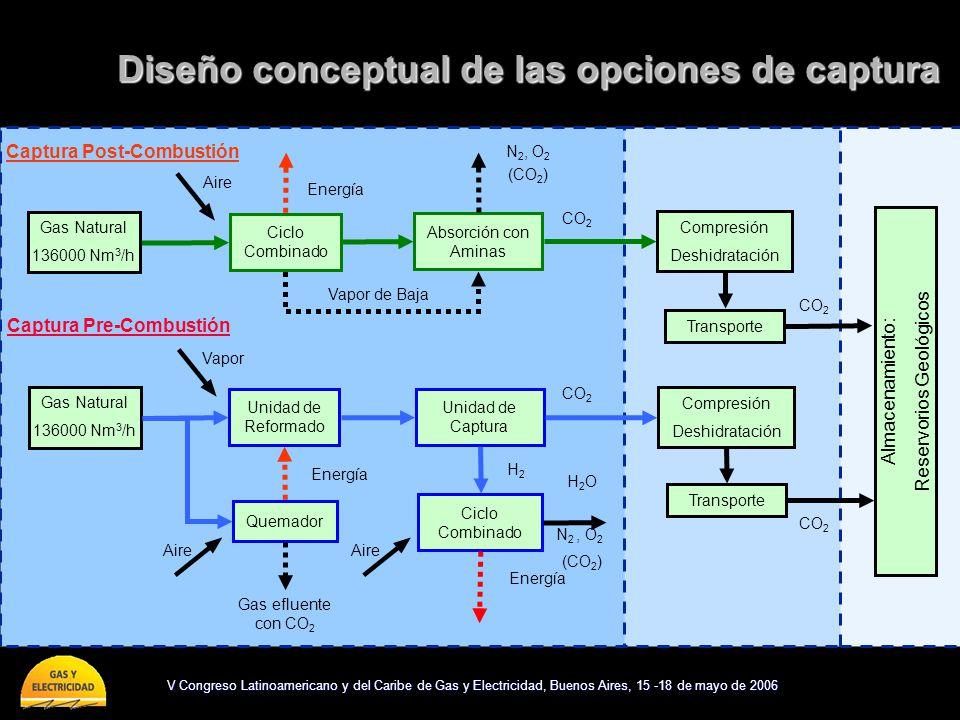 Diseño conceptual de las opciones de captura