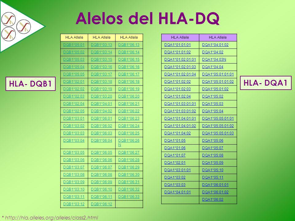 * http://hla.alleles.org/alleles/class2.html