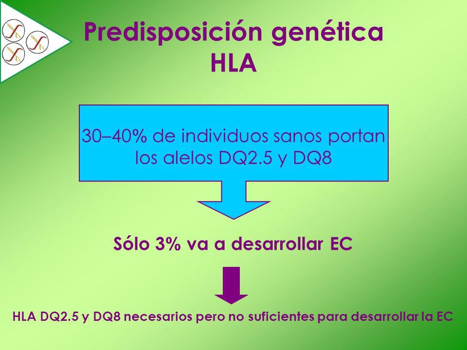 30–40% de individuos sanos portan los alelos DQ2.5 y DQ8