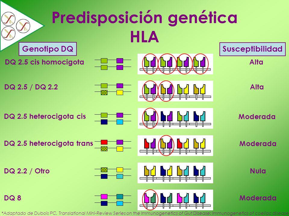 Predisposición genética HLA