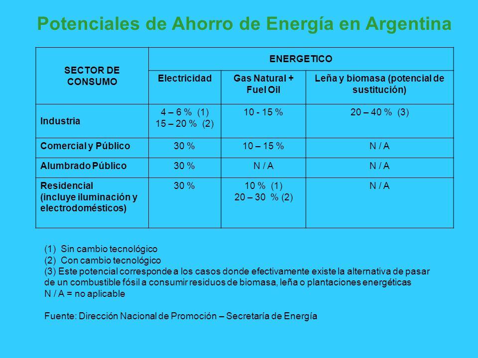 Potenciales de Ahorro de Energía en Argentina