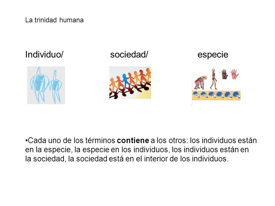 Individuo/ sociedad/ especie