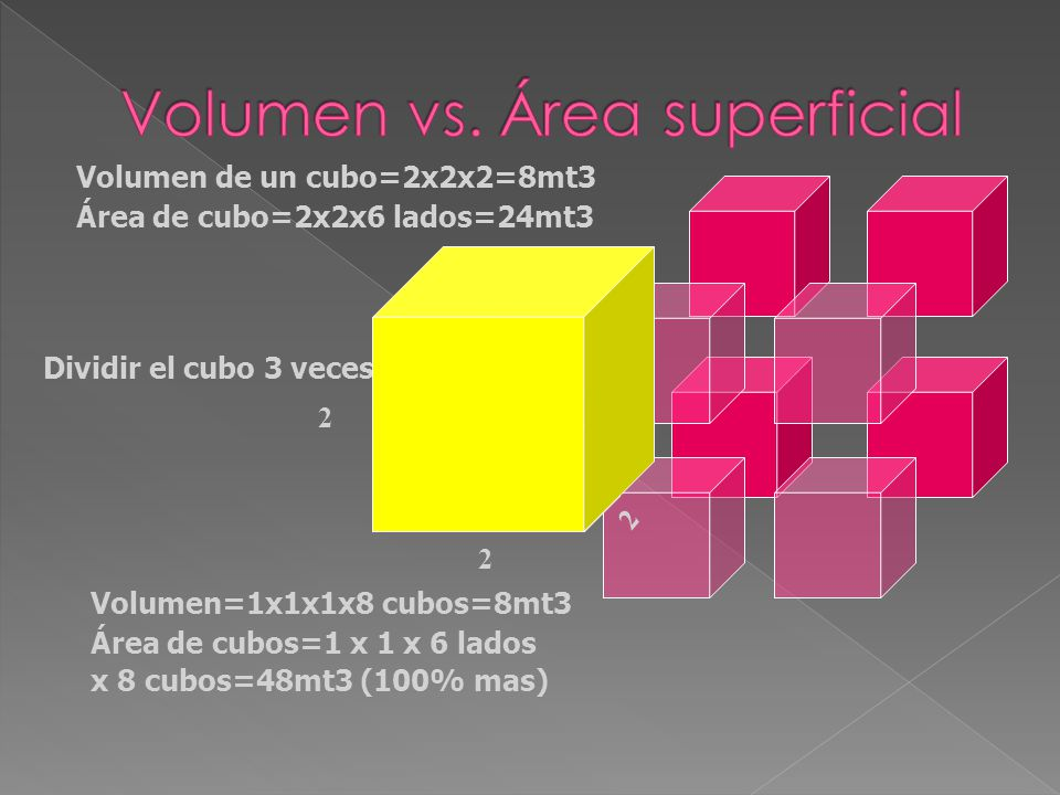 Volumen vs. Área superficial