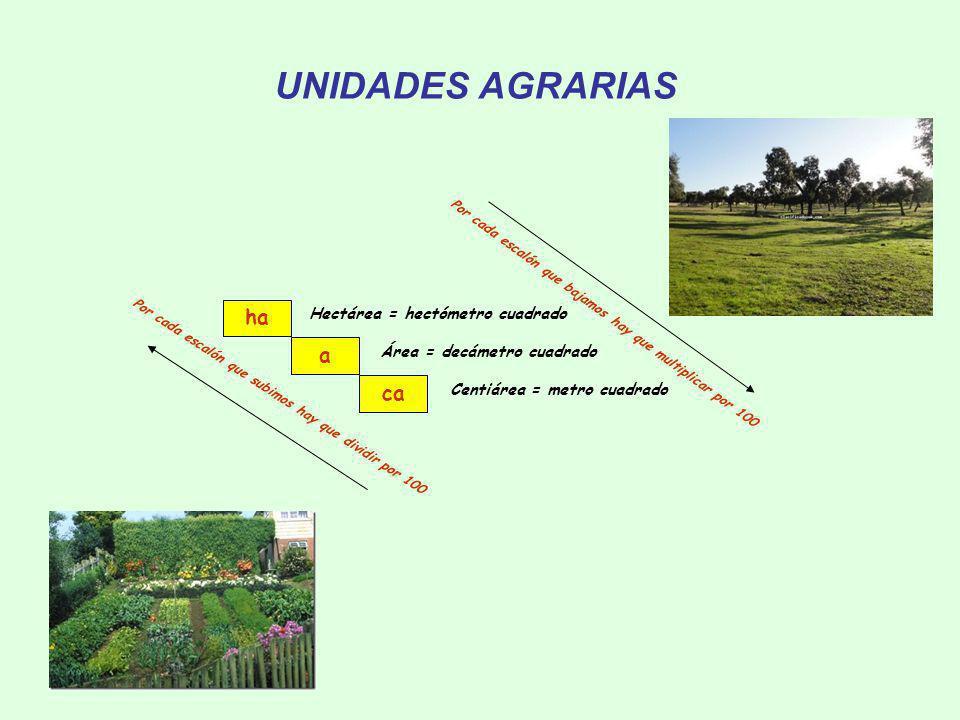UNIDADES AGRARIAS ha a ca Hectárea = hectómetro cuadrado