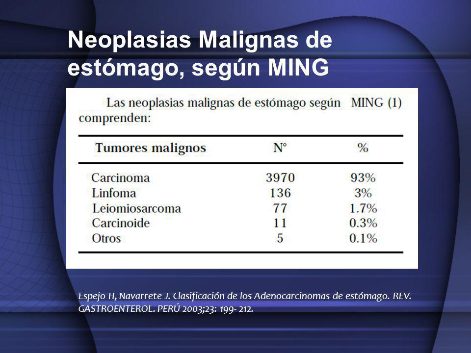 Neoplasias Malignas de estómago, según MING