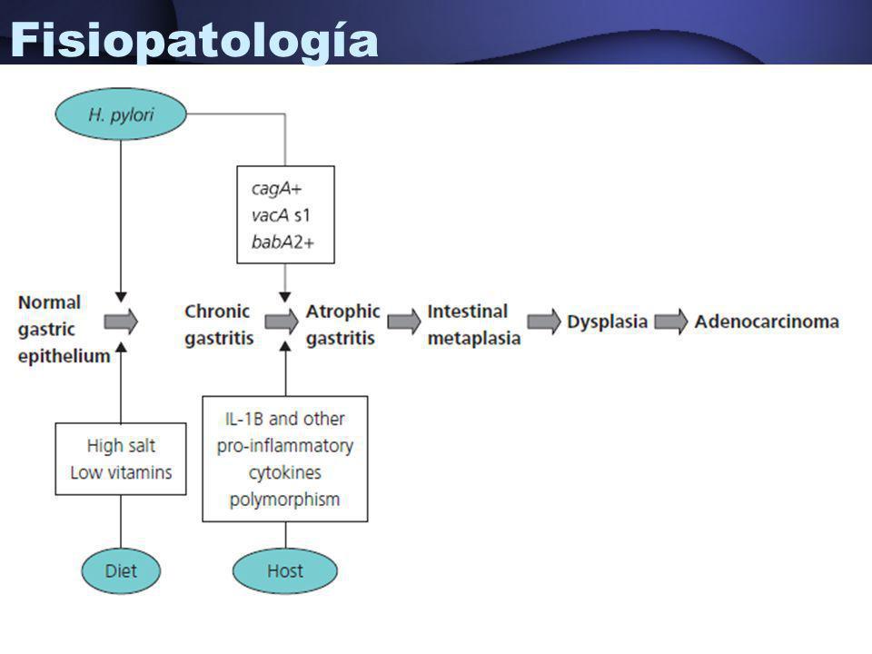 Fisiopatología Yamada T, et al. Textbook of gastroenterology.
