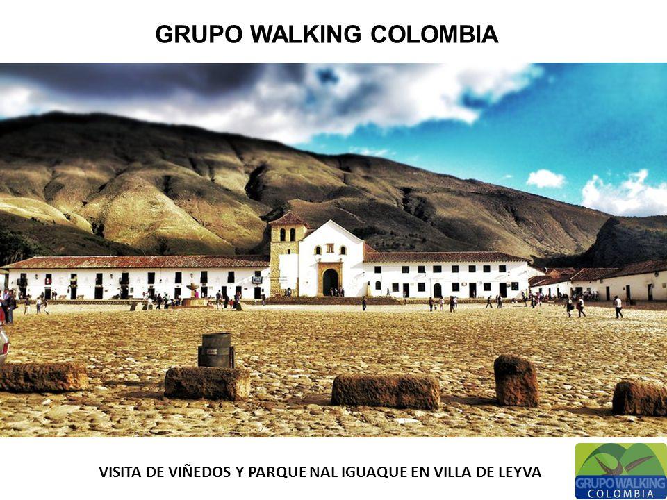 GRUPO WALKING COLOMBIA