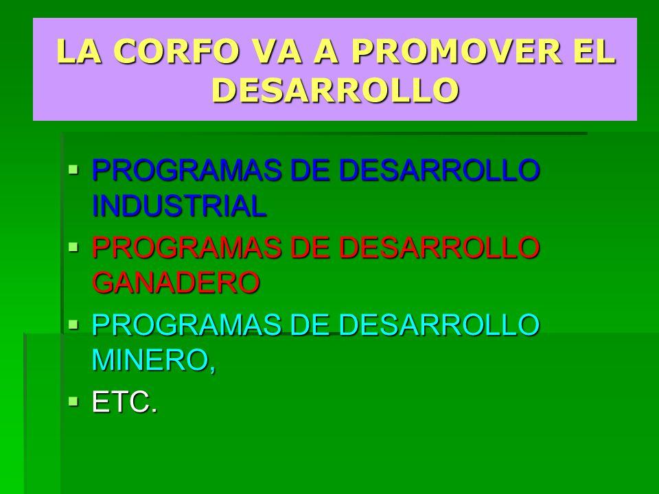 LA CORFO VA A PROMOVER EL DESARROLLO