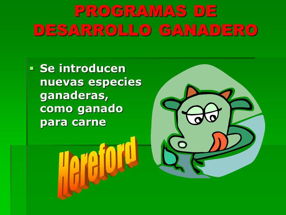 PROGRAMAS DE DESARROLLO GANADERO