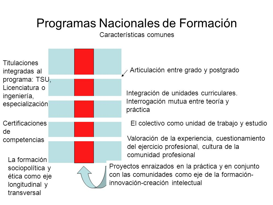 Programas Nacionales de Formación Características comunes