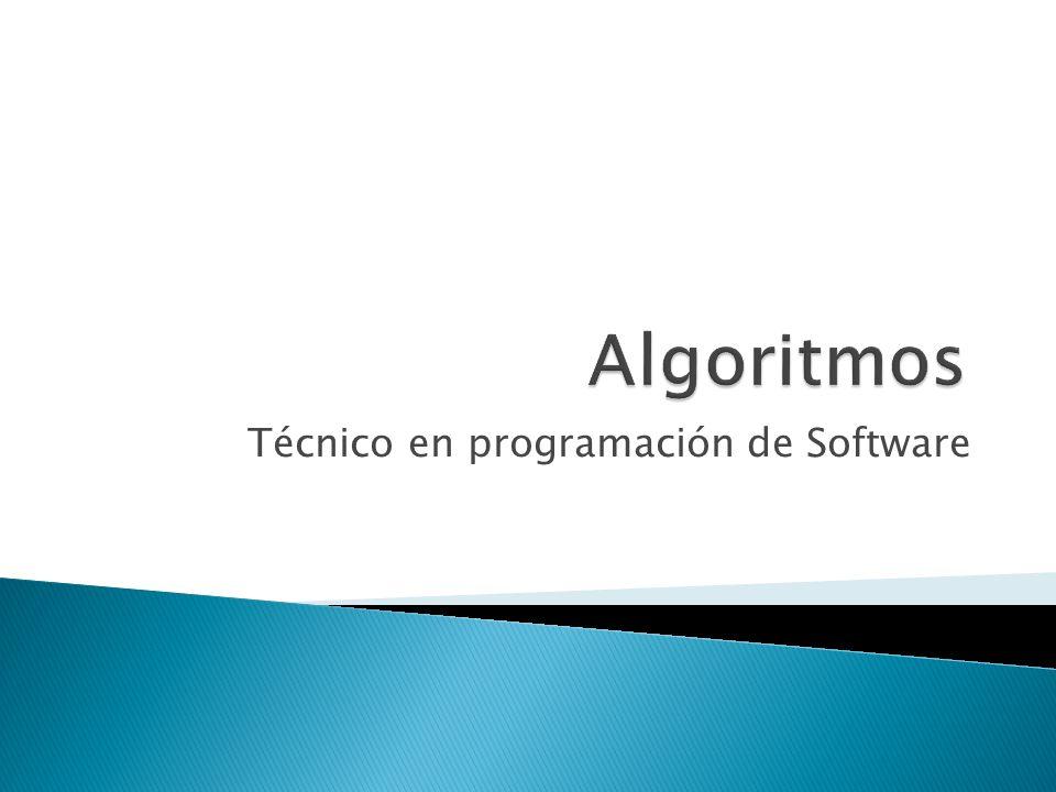 Técnico en programación de Software