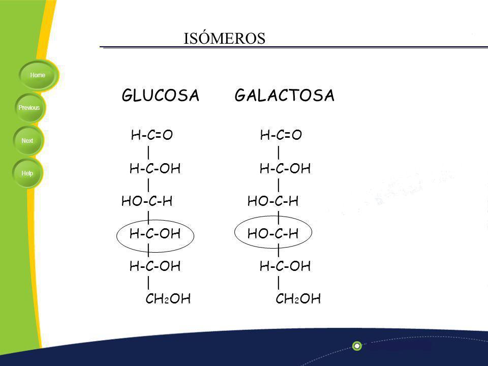 ISÓMEROS GLUCOSA H-C=O GALACTOSA H-C=O | H-C-OH HO-C-H CH2OH | H-C-OH