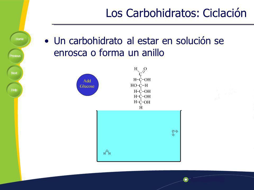 Los Carbohidratos: Ciclación