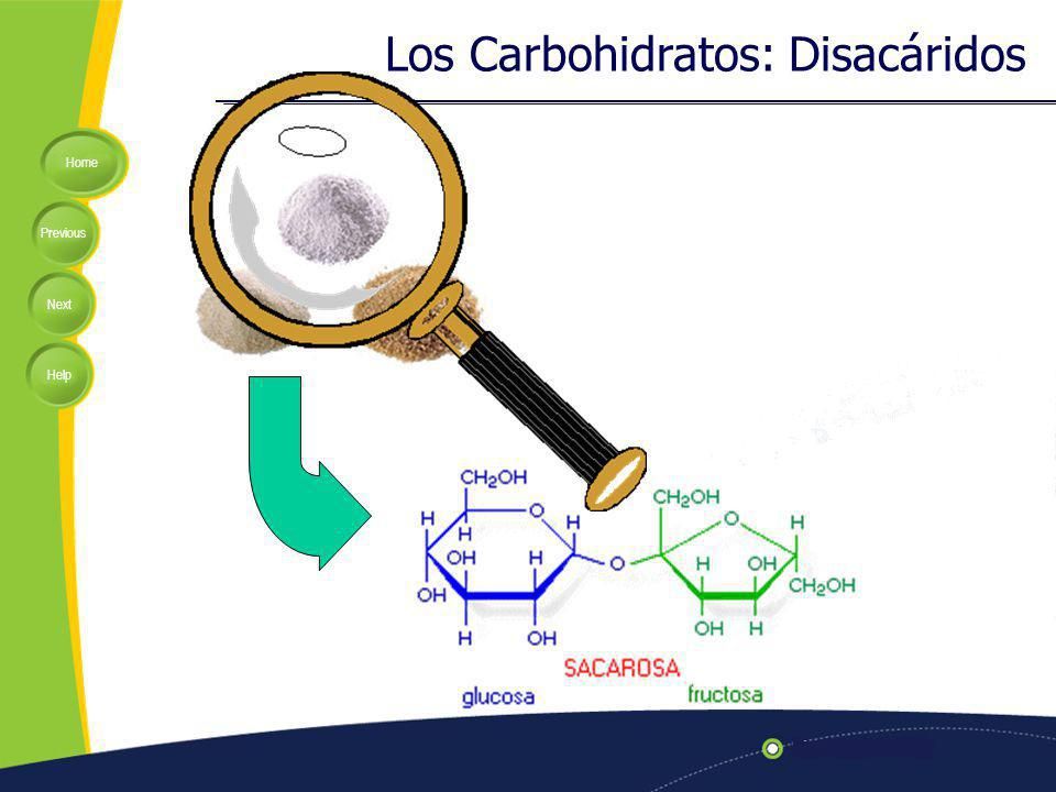Los Carbohidratos: Disacáridos