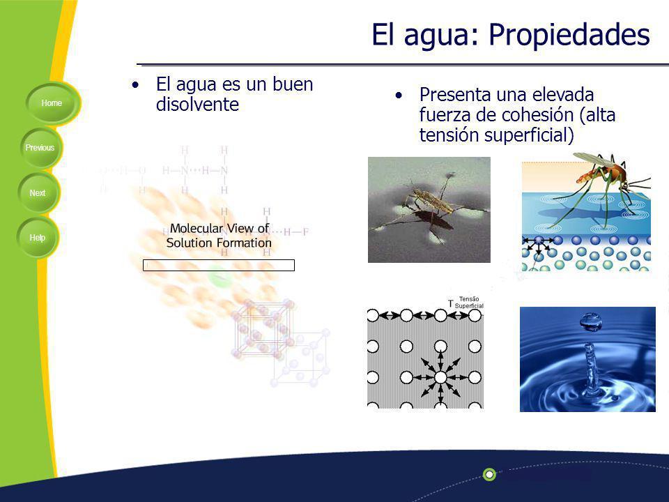 El agua: Propiedades El agua es un buen disolvente