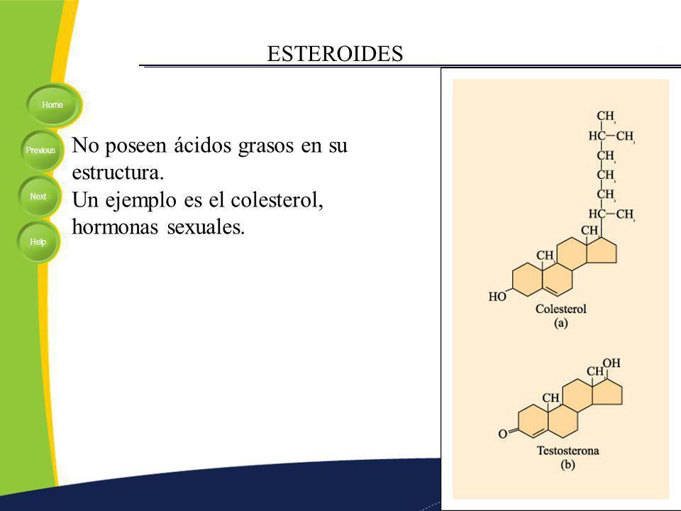 ESTEROIDES No poseen ácidos grasos en su estructura.