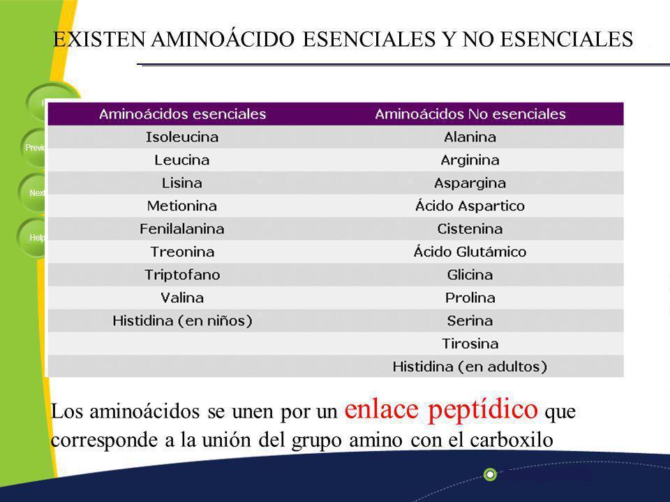 EXISTEN AMINOÁCIDO ESENCIALES Y NO ESENCIALES